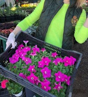 Цветочный базар