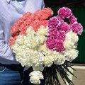 #ПетровскийСад56<br>Телефон для заказов ???<br>? 8 (922) 829-10-00<br>? 90-10-00<br>???Новая поставка свежей красоты??<br>?Гвоздики- 49₽<br>?розы- 60₽<br>?розы- 35₽<br>Так же есть в наличии ещё несколько сортов роз, эустомы, альстромерии, хризантемы, герберы, лилии, зелень, сухоцветы ?<br>И Нежные, и яркие! Каждый цветок по-своему великолепен? Ждём Вас на Большом Складе!!☺️<br>Собираем букетики на Ваш вкус и так же можно выбрать из наличия ? Для радости не нужен повод ✨ Цветы-это рай на земле ☺️???☀️? Ваш фермерский рынок @petrovskymarket ???<br>